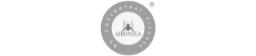 Logo Aeroyoga gris 256x56