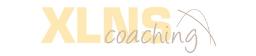 Logo Xlns gris 256x56